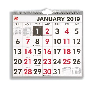 Business 2019 Wall Calendar Wirobound Month to View (Pack of 1)